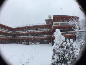 今日は珍しく大雪!